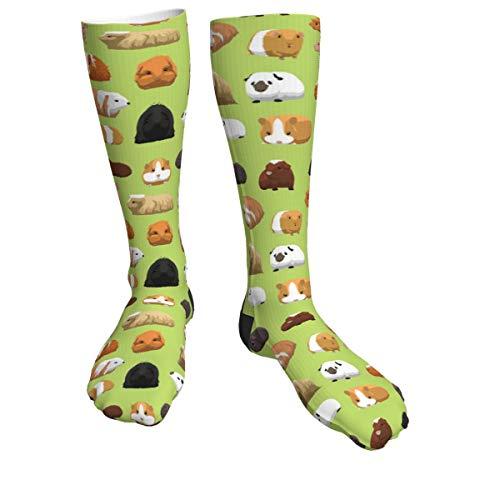 Guinea Pig Classic Dress Cotton Socks Comfortable Breathable Over-The-Calf Tube 40cm