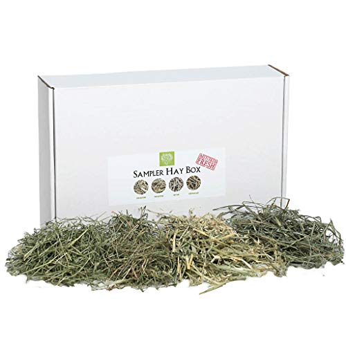 Small Pet Select-Sampler Box, 2ND Cutting, 3RD Cutting Timothy Hay, Oat Hay, & Orchard Hay