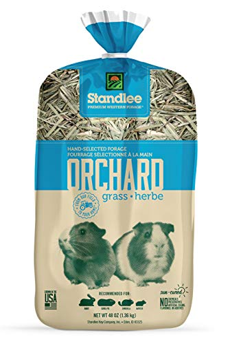 Standlee Hay Company Premium Orchard Grass Hand-Selected Forage, 48 oz Bag