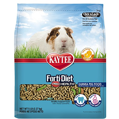 Kaytee Forti Diet Pro Health Food for Guinea Pig, 5 Pound