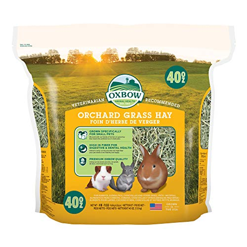 Oxbow Animal Health Orchard Grass Hay - All Natural Grass Hay for Chinchillas, Rabbits, Guinea Pigs,...