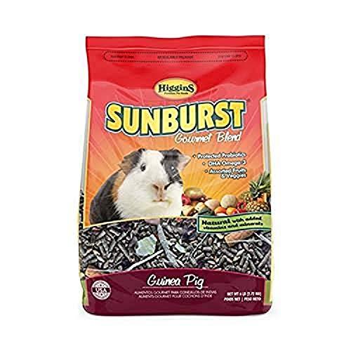 Higgins Sunburst Guinea Pig 6 Lbs