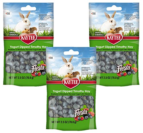 Kaytee Fiesta Timothy Bits Pet Treat [Set of 3] Flavor: Blueberry