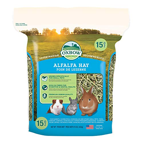 Oxbow Animal Health Alfalfa Hay, For Rabbits, Guinea Pigs, And Small Pets, Grown In The USA,...