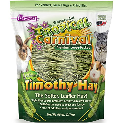 F.M. Brown's Tropical Carnival Natural Timothy Hay for Guinea Pigs, Rabbits, and Other Small...